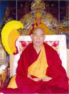 Afbeelding Z.E. Tokden Rinpoche
