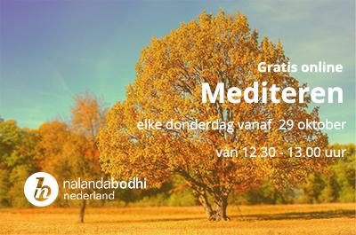 gratis online mediteren